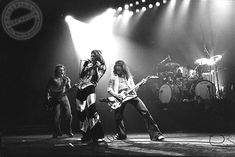 Earliest Van Halen Photos From Iconic Music Photographer Ross Halfin