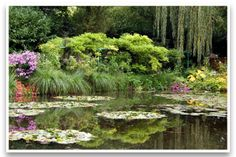 Lily Pond by Claude Monet at his home in Giverny.  http://agardenlife.com/article/2012/05/30/monet's-gardens