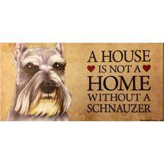 my little sister is a schnauzer mini schnauzer, photo display, anim, dog sign, schnauzer quotes, dog lovers, wood dog, true, black labs