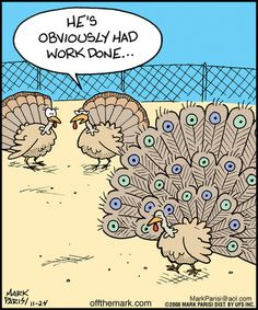 Thanksgiving humor - Stacey H Burrage Funny Cartoons, Funny Comics, Funny Jokes, Cartoon Humor, That's Hilarious, Funny Cute, The Funny, Turkey Jokes, Turkey Cartoon