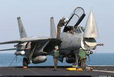 Grumman F-14D(R) Tomcat aircraft picture