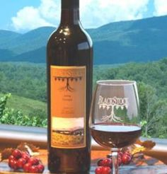 Georgia has many different wineries to choose from. Our mountains provide the perfect place to escape the ordinary and embrace the exceptional. You can be active in your pursuit of outdoor excursions from golfing and mountain biking to back-country hiking, camping, and rafting. Or experience the luxury of an area bed and breakfast or country inn, browse our antique stores and local art galleries, and savor the cuisine of both casual and fine dining options nestled in our Georgia wine…
