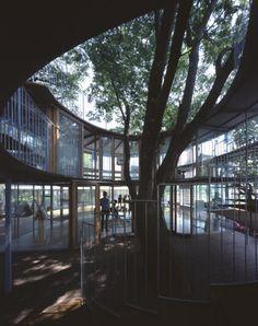Anillo alrededor de un árbol. En Detalle. por TAKAHARU+YUI TEZUKA/TEZUKA ARCHITECTS