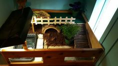 Indoor habitat for our box turtle More