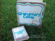 """What a fantastic idea! This woman has """"Grandma's Camp"""" every summer for her grandkids. Fun ideas! (Note: she has just had 2-4 grandkids each time, but if you're brave, I'm sure you could do it with more!))"""