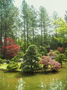 Garden by a lake Beautiful Flowers Garden, Beautiful Gardens, Lake Garden, Outdoor Living, Backyard, Outdoors, Gardening, River, Natural