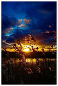 Photo : Un étang devant un couché de soleil