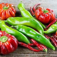 It's Chile Pepper Season :: Search by flavors, find similar varieties and discover new uses for ingredients @ preppings.com