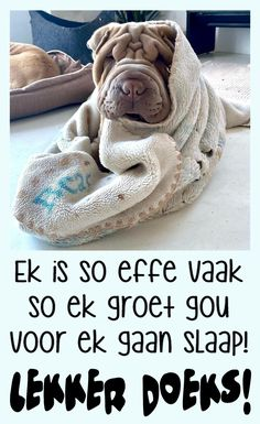 Good Night Sleep Tight, Afrikaanse Quotes, Goeie Nag, Good Night Quotes, Cute Quotes, Messages, Sayings, Winter, Projects