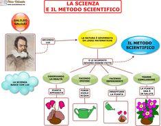Caso Stamina: un nostro approfondimento - Associazione Luca Coscioni Reading Practice, Heart Day, Stem Projects, Science Nature, Anatomy, Coding, Education, School, Books
