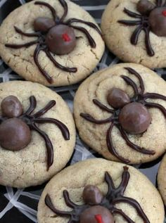 Spooky never tasted so sweet—use Whoppers and Goobers candies on top of peanut butter cookie dough to make delicious Halloween spider cookies! (I used chocolate covered raisins and for the heads) Halloween Desserts, Muffins Halloween, Postres Halloween, Hallowen Food, Halloween Goodies, Halloween Food For Party, Spooky Halloween, Halloween Decorations, Halloween Biscuits