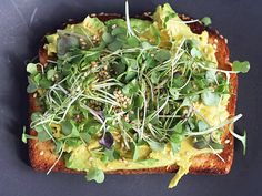 AVOCADO TOASTS WITH MICRO GREENS + SESAME