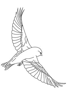 Canary Bird Spread His Wing Coloring Pages : Best Place to Color Bird Coloring Pages, Coloring Pages For Kids, Coloring Sheets, Paper Folding Crafts, Canary Birds, Bird Wings, Online Coloring, Beautiful Words, Charmed