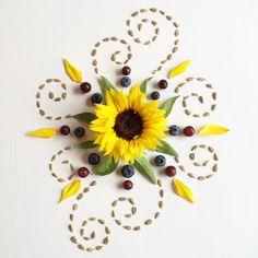 Sunflower - Flora Forager - Bridget Beth Collins - http://floraforager.com