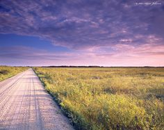 """""""Roosevelt-Norris Forest Road"""" South of Williams, MN – Lake of the Woods County"""