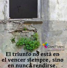 HAY QUE SEGUIR ADELANTE... (((Sesiones y Cursos Online www.ciaramolina.com #psicologia #emociones #salud)))
