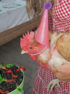 My pet chickens bday party.