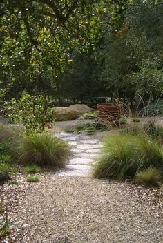 gravel, pavers, and rocks among the trees and grasses  makes for a calm and peaceful place