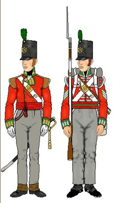 """It seems a small number of officers and men from the 51st Regiment augmented soldiers from the 96th Regiment.  The uniform of the 51st had green facing and pointed pair loops.  It seems the children of the colony could not tell any difference, referring to all soldiers as """"Lobsters""""."""
