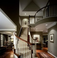 nice stairs dark stains rise and run with tan/cream carpet runner.