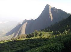 The amazing beauty of a part of Munnar Hill Stations in Kerala, India. More info about Munnar Hills at http://munnarhillskerala.blogspot.com/