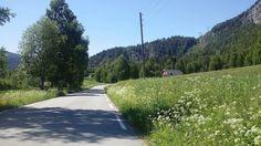 FLÅ - Eventyret nederst i Hallingdal, Buskerud,Norway Norway, Country Roads, Viajes