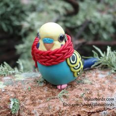 Red Scarf Budgie