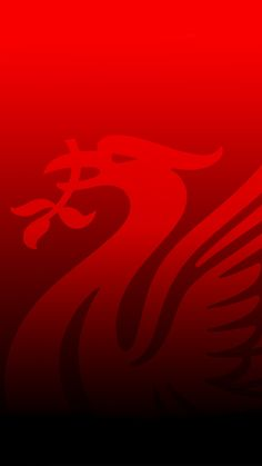 Premier Football, Fc Liverpool, Liverpool Football Club, Liverpool Fc Wallpaper, This Is Anfield, Red Day, Bodybuilding Workouts, Mobile Wallpaper, Premier League