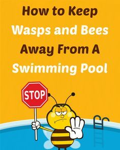 There are many great ways to keep wasps and bees away from your pool so you can enjoy a sting-free dip during those hot summer months. Cool Swimming Pools, Cool Pools, Awesome Pools, Swiming Pool, Lap Pools, Above Ground Pool, In Ground Pools, Piscina Diy, Viajes