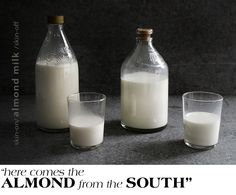 Almond Milk Labratory by @Mandy Lee / Lady and Pups ladyandpups.com #paleo