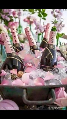Trendy Ideas For Birthday Vrouw Champagne Happy Birthday Gift Picture, Happy Birthday Pictures, Happy Birthday Quotes, Birthday Messages, Happy Birthday Cards, Niece Birthday Wishes, Birthday Wishes Greetings, Birthday Present For Boyfriend, Girlfriend Birthday