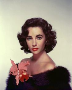 vintage everyday: 40 Extraordinary Publicity Color Photos of Elizabeth Taylor for 'The Last Time I Saw Paris' Golden Age Of Hollywood, Vintage Hollywood, Hollywood Glamour, Hollywood Stars, Hollywood Actresses, Classic Hollywood, Edward Wilding, Richard Avedon, Divas