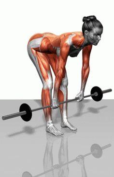訓練動作不求人!想練哪塊肌肉,就練哪塊肌肉!