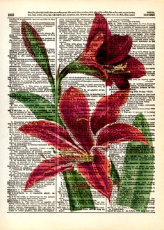 Lilies  Vintage Dictionary Book Page Art Print by KFLGetsHerFunkOn