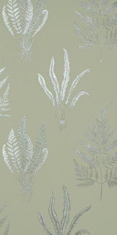 Sanderson A Painter's Garden Woodland Ferns Linen - DAPGWO103 Pattern