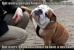 Not every person knows how to love a dog, but every dog knows how to love a person <3