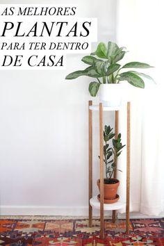 Confira uma lista de plantas indicadas para se ter dentro de casas e apartamentos que ainda oferecerem benefícios como a purificação do ar.