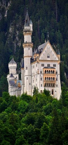 Neuschwanstein castle, Bavaria, Germany. This is a beautiful perspetive of it~~by Uplandswolf~~