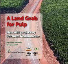 """Mozambico: sfruttamento del territorio per la carta """"A Land Grab for Pulp"""" (land grabbing per la cellulosa), un rapporto pubblicato dall'Environmental Paper Network, assieme ad associazioni del Mozambico e del Portogallo, chee spiega cosa stasuccedend #protesta #ambiente #mozambico"""