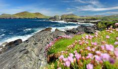 Si estás planeando un viaje alrededor de Irlanda y dispones de al menos tres días, ¡este post te interesa! Descubre una ruta por el Anillo de Kerry.