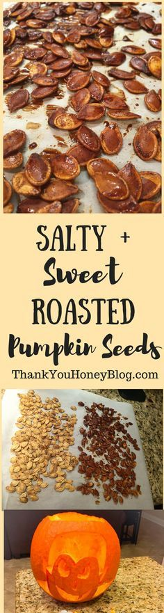 Save your pumpkin seeds after carving jack'o lanterns and make this Salty + Sweet Roasted Pumpkin Seeds recipe. Click through & PIN IT to read later & Follow + Subscribe. Carving Pumpkins, Halloween, Pumpkin Seeds, pumpkins, recipe, Salty, Salty & Sweet Roasted Pumpkin Seeds, Sweet