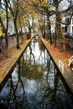 Nieuwe gracht, Autumn in Utrecht, The Netherlands by suzette Places Around The World, Oh The Places You'll Go, Places To Travel, Places To Visit, Around The Worlds, Utrecht, Wonderful Places, Beautiful Places, Parcs