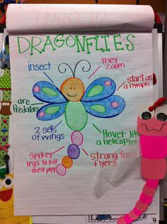 Dragonfly Anchor Chart