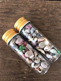 2 Flasche von winzigen Strand Muscheln MIX Schalen Seashore nautischen Handwerk Flasche Füllstoffe Gefälligkeiten Dekor Schmuck   Sie erhalten 2 Flasche ein Mischen von winzigen Muscheln. Diese sind ideal für Handwerk und kleine Flaschenfüller! Ich glaube, kleine Glasflaschen tragen!  Flasche ist 2 3/8 hoch und 22mm Durchmesser. Bild mit einen Cent gezeigt ist, wie viel in 1 Flasche.  Kontaktieren Sie mich, wenn Sie mehr möchten.