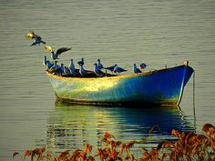 Blue Boat by Mustafa ILHAN on 500px