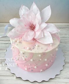 Pin by Carol T on Cakes Specialty Pinterest Cake Cake designs