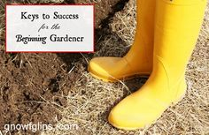 Keys to Success for the Beginning Gardener