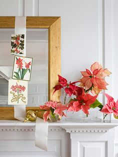 Christmas Garden  Poinsettia bracts in shades of red and pink stand proudly in mismatched glasses standing in as vases. The different shades of pink soften the look of the crisp white mantel and surround.