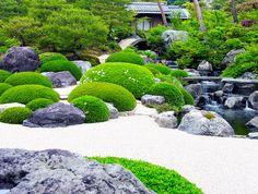 die englische Landschaft mit blühenden Blumen auch in einem Teich im Garten Garten mit Wasser in den Vororten dekoriert wurde garniert mit bunten Fischen Fische
