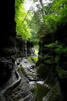 Canyon path Seneca Falls